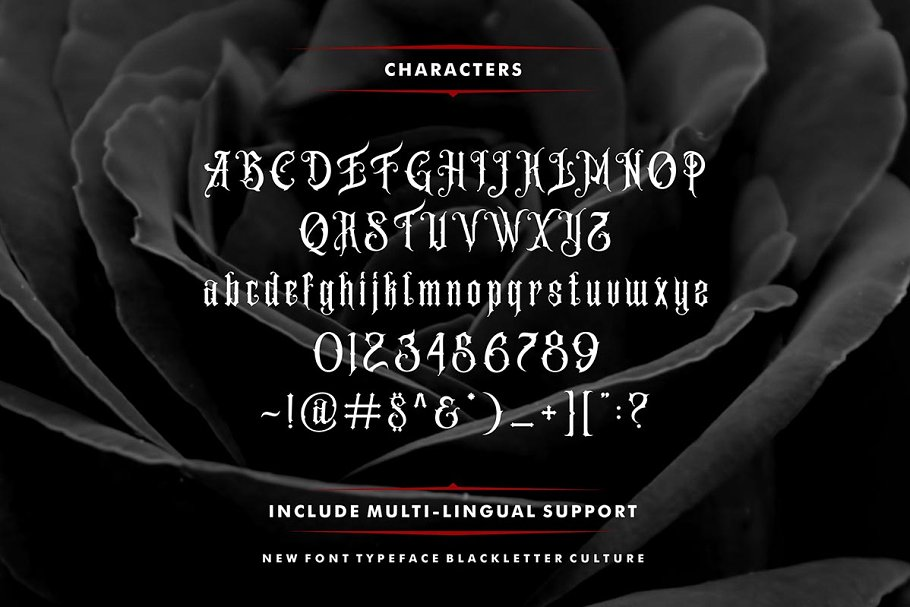 Amstrong Family Font Free Download 2 - Post