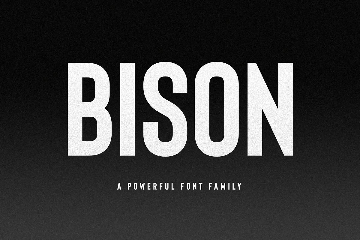 BisonAPowerful 3 - Post