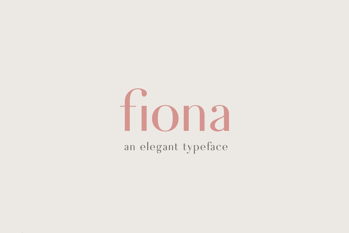 FionaAElephant 6 - Post