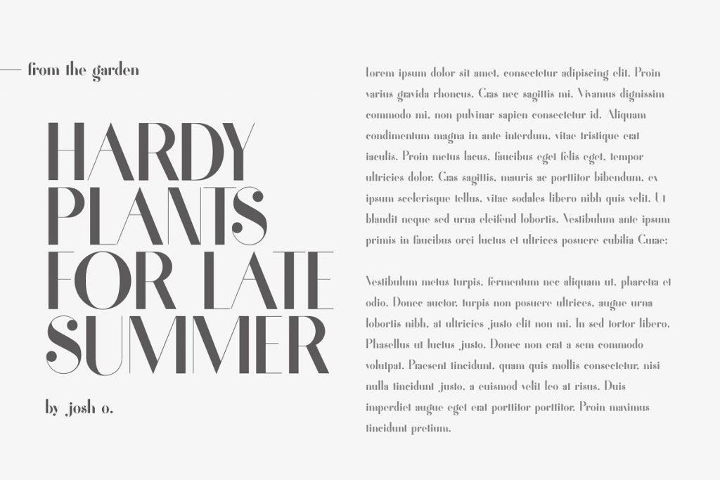 Fragile A Delicate Typeface Font