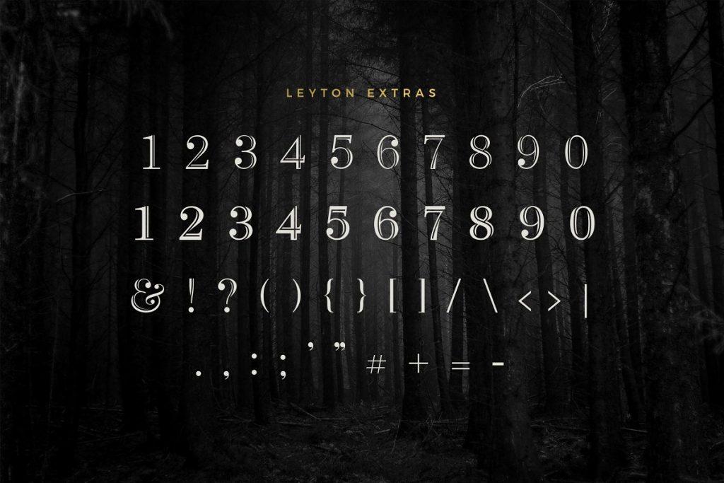 LeytonTypeface 1 - Post