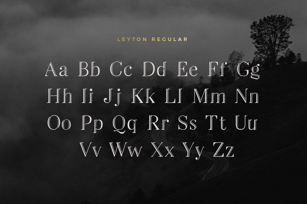 LeytonTypeface 2 - Post