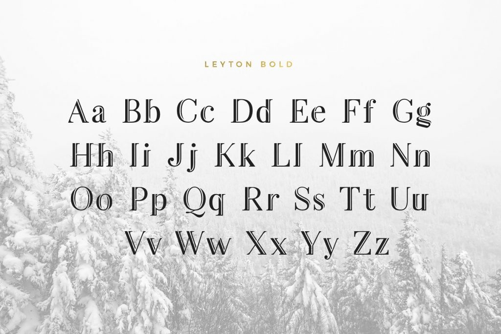 LeytonTypeface 9 - Post