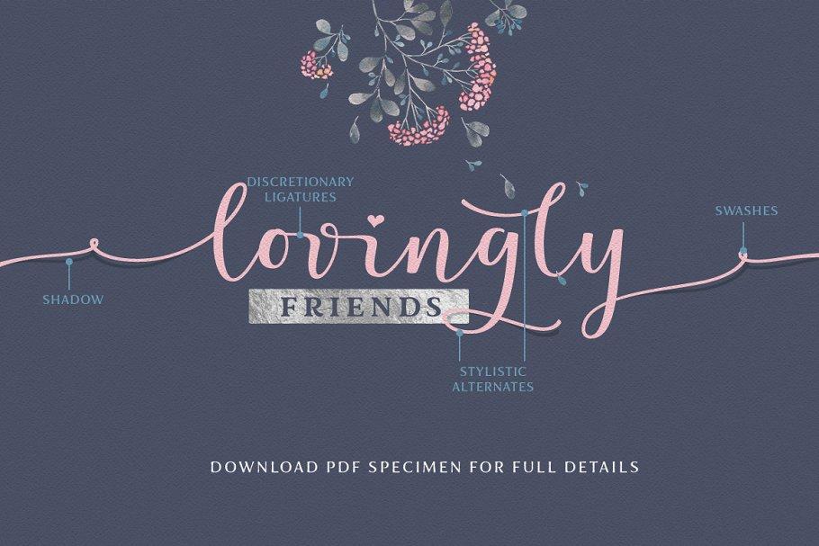 Lovingly Friends 6 - Post