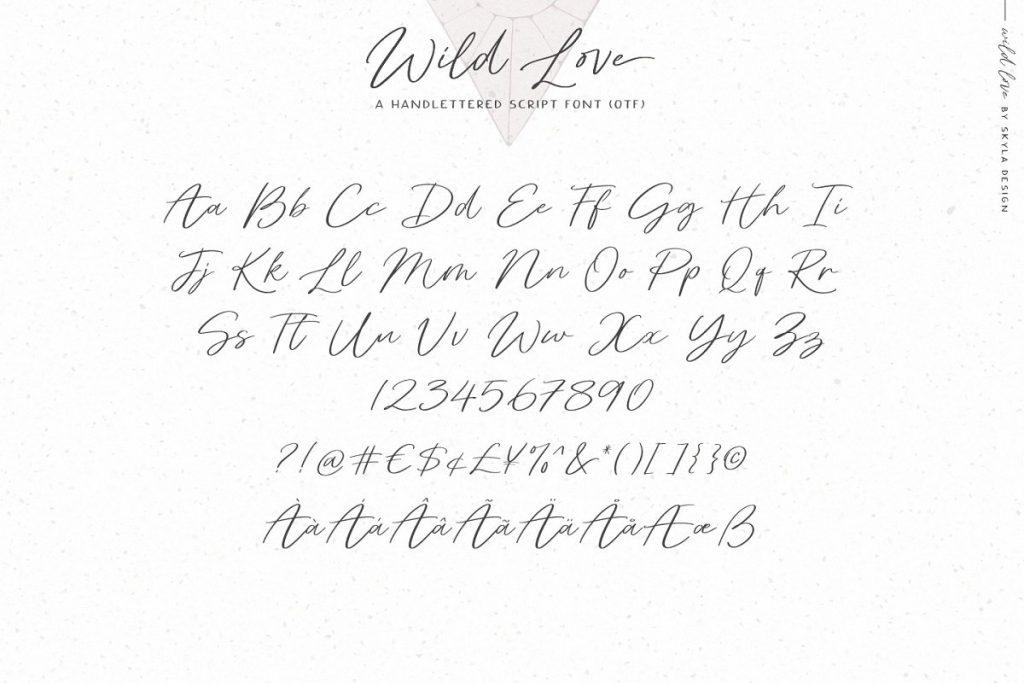 WildLove 13 - Post