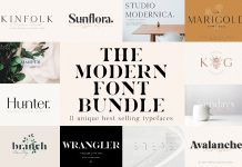 The Chic and Unique Modern Font Bundle