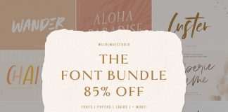The Font Bundle by Wilde Mae Studio Free Download