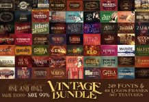 Vintage Bundle 249 Fonts & 414 Logos Free Download