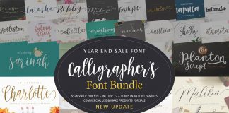 Calligraphers Font Bundle Free Download