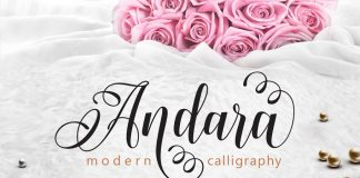 Andara font family free download