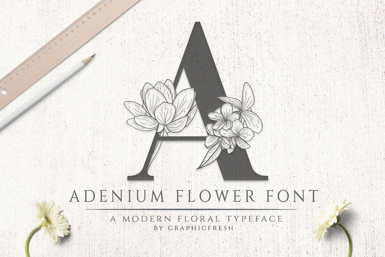 Adenium Flower Font Family Free Download