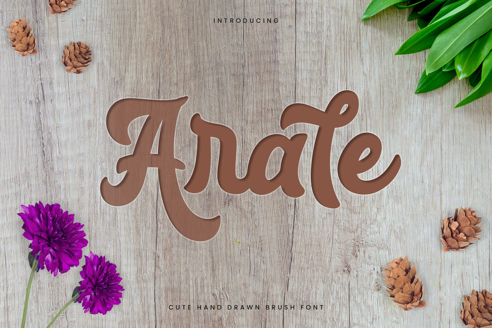 Arale Font Family Free Download