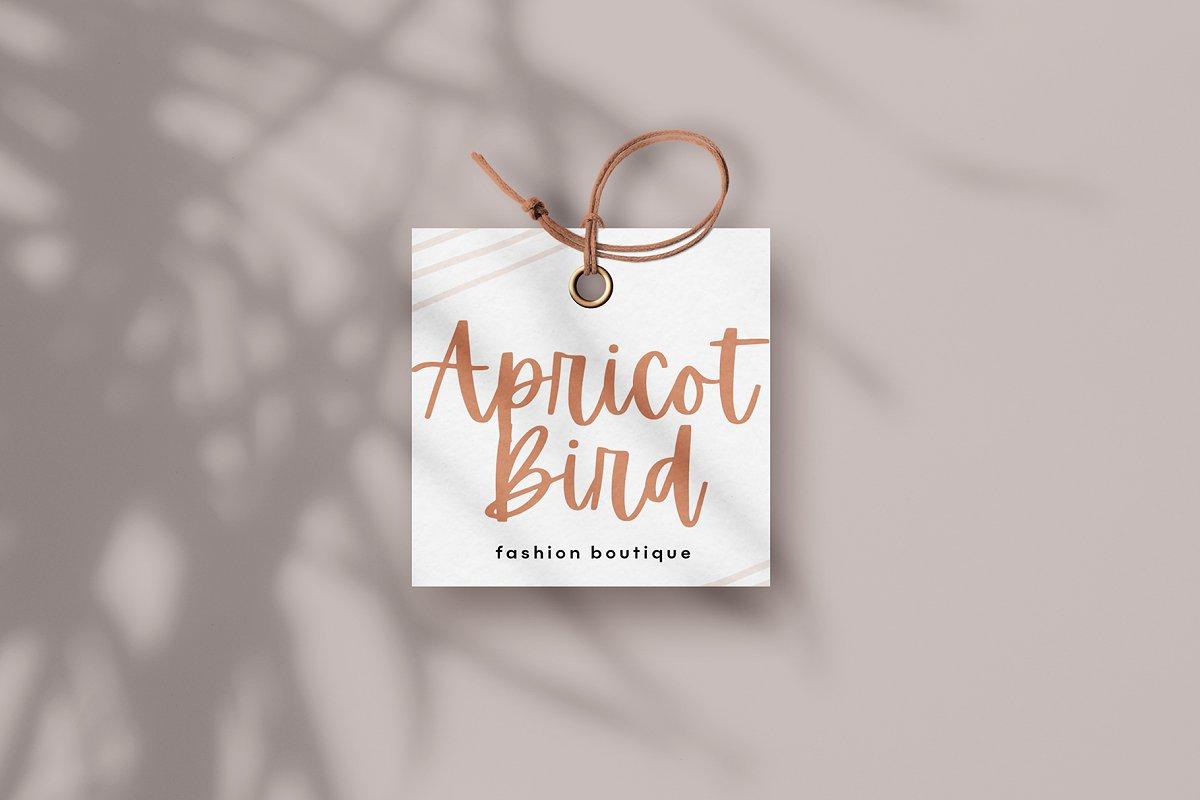 Apricots font